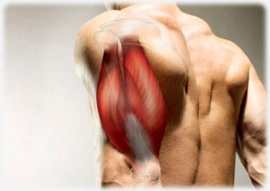Τρικέφαλοι: Οι καλύτερες ασκήσεις