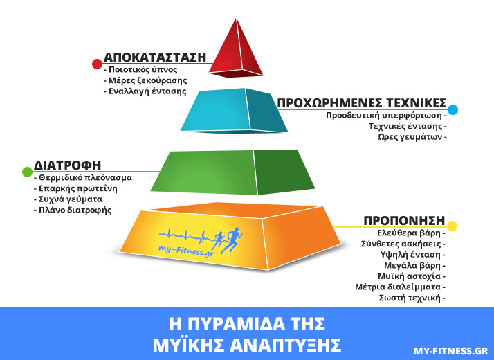 pyramid of muscle building myFitnessGR